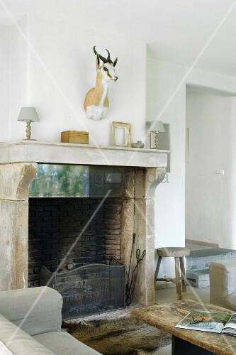 offener kamin und tiertroph e in l ndlichem ambiente bild kaufen living4media. Black Bedroom Furniture Sets. Home Design Ideas