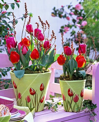 tulpen in schale t pfen mit tulpenserviettentechnik 3 3 bild kaufen living4media. Black Bedroom Furniture Sets. Home Design Ideas