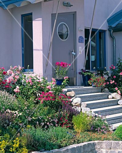 hauseingang mit treppe und beet bild kaufen living4media. Black Bedroom Furniture Sets. Home Design Ideas