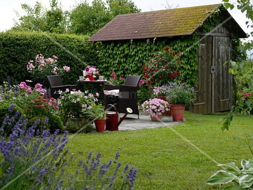 kleine runde terrasse mit sitzgruppe und k belpflanzen. Black Bedroom Furniture Sets. Home Design Ideas