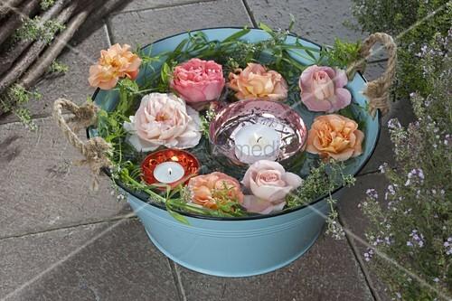 t rkise blechwanne mit bl ten von rosa rosen zitronenthymian bild kaufen living4media. Black Bedroom Furniture Sets. Home Design Ideas