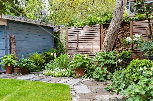 garten im fr hling mit wei en tulpen gr npflanzen und. Black Bedroom Furniture Sets. Home Design Ideas