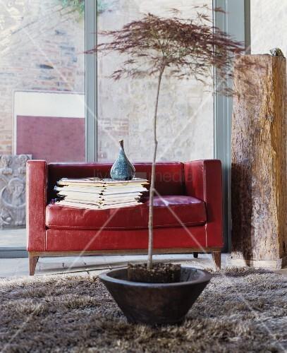 rotes ledersofa mit b cherstapel und vase vor glasfassade. Black Bedroom Furniture Sets. Home Design Ideas