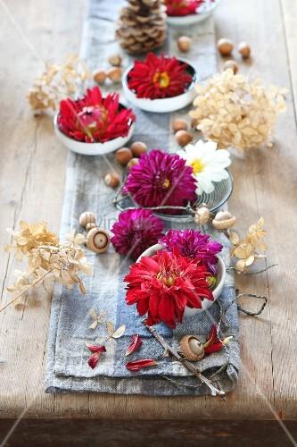 Tischdekoration zu halloween mit dahlien haseln ssen und - Tischdekoration halloween ...