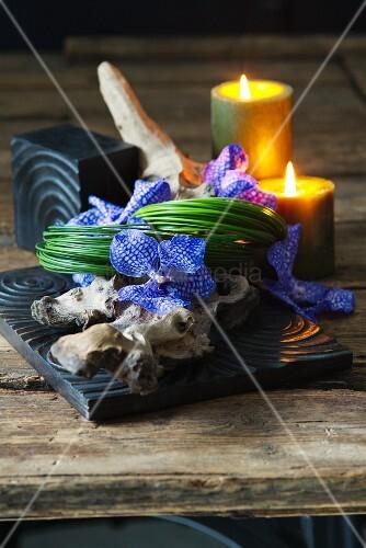 blaue orchideen auf einem st ck wurzelholz mit kerzendeko. Black Bedroom Furniture Sets. Home Design Ideas