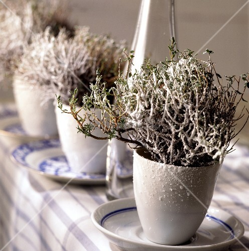 Plants with artificial snow as winter table decoration for Artificial snow decoration