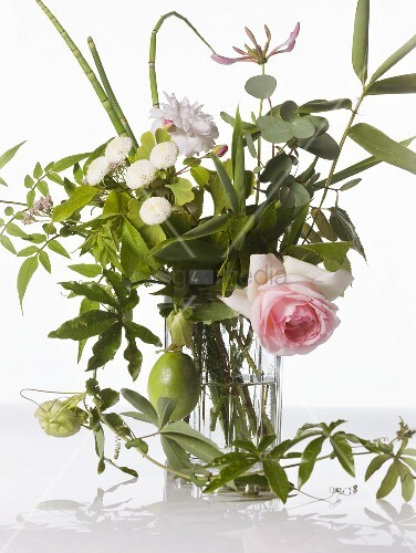 Flowers and medicinal herbs in vase – living4media
