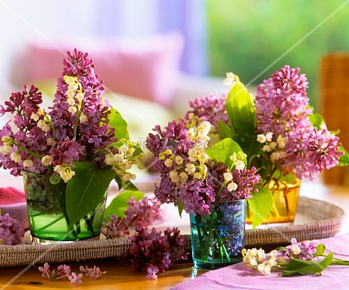Lilac and lilies-of-the-valley as table decoration – living4media