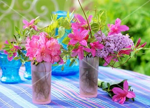 rhododendron azaleen flieder und birke in gl sern bild. Black Bedroom Furniture Sets. Home Design Ideas