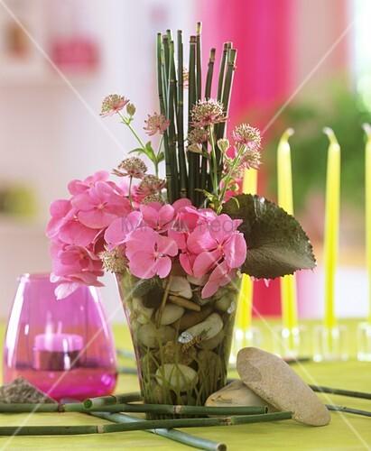 schachtelhalm hortensien und sterndolde in vase mit steinen bild kaufen living4media. Black Bedroom Furniture Sets. Home Design Ideas