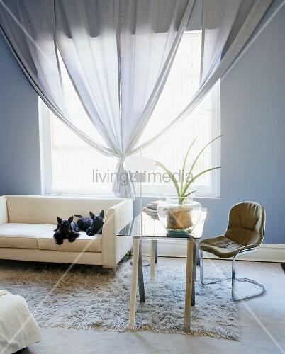 Sofa Mit Zwei Schwarzen H Ndchen Vor Einem Quadratischen Fenster Mit Drapierter Gardine Im