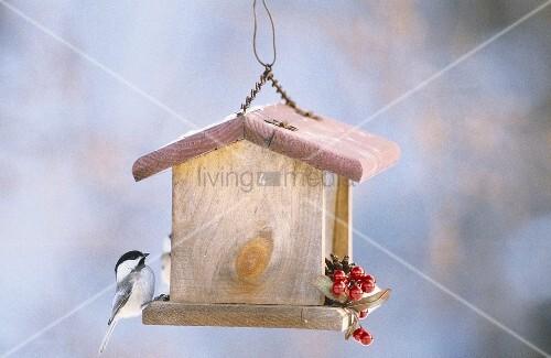 ein vogelhaus mit meise bild kaufen living4media. Black Bedroom Furniture Sets. Home Design Ideas
