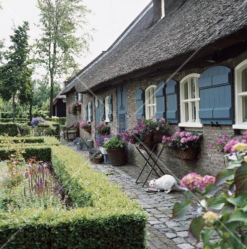 ein traditionell nordfriesisches backsteinhaus mit reetdach und blauen fensterl den bild. Black Bedroom Furniture Sets. Home Design Ideas