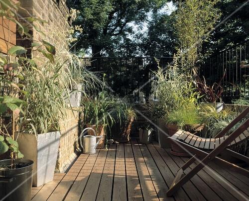 liegestuhl und pflanzent pfe auf holzterrasse bild. Black Bedroom Furniture Sets. Home Design Ideas