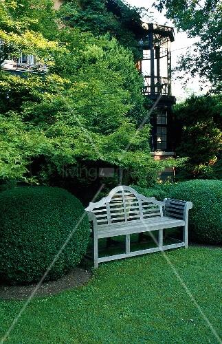 weisse holzbank in der nische zweier buchsbaumkugeln und. Black Bedroom Furniture Sets. Home Design Ideas
