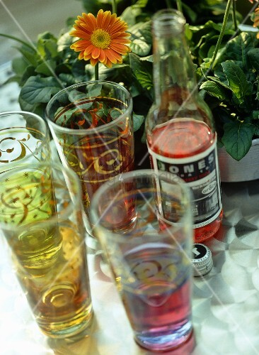 flasche cranberry soda und gl ser vor gerbera im topf. Black Bedroom Furniture Sets. Home Design Ideas