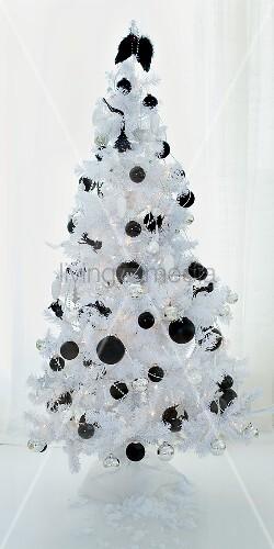 ein weisser christbaum mit schwarzen christbaumkugeln bild kaufen living4media. Black Bedroom Furniture Sets. Home Design Ideas