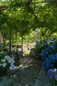 A Well-Tempered Garden