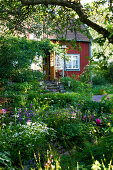 Pia's Garden
