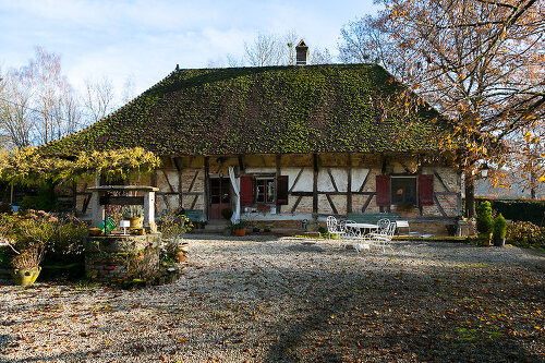 Burgundy Farm