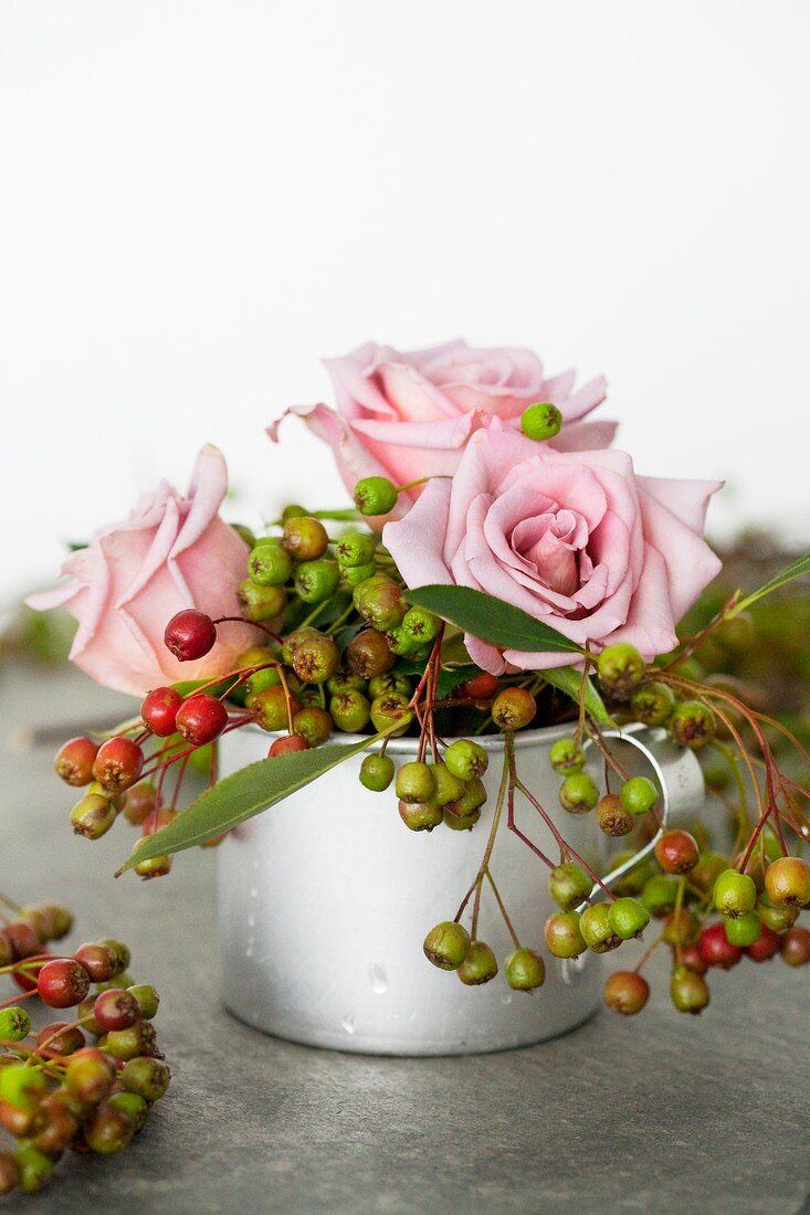 Pink roses and chokeberries
