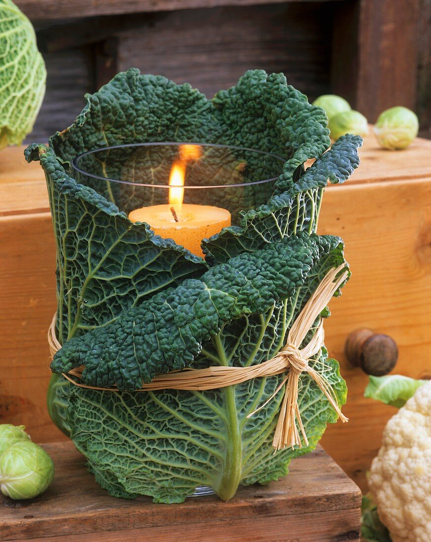 Windlight wrapped in savoy cabbage leaves tied with raffia