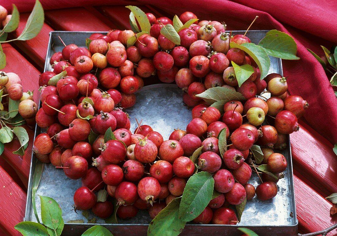 Wreath of crab-apples