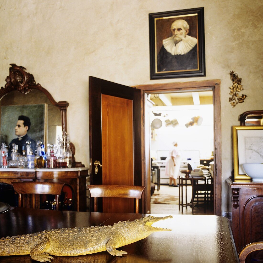 A living room in a South African country house - a stuffed crocodile on a table, family portraits and an open kitchen door