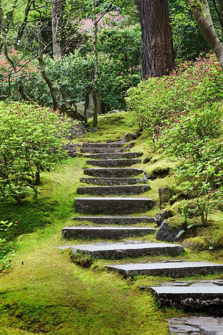 Stone steps in Japanese Garden, Portland, Oregon, United States