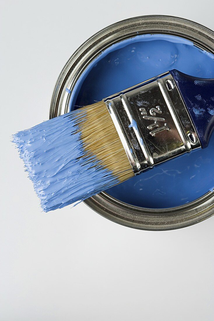 A paintbrush and blue paint