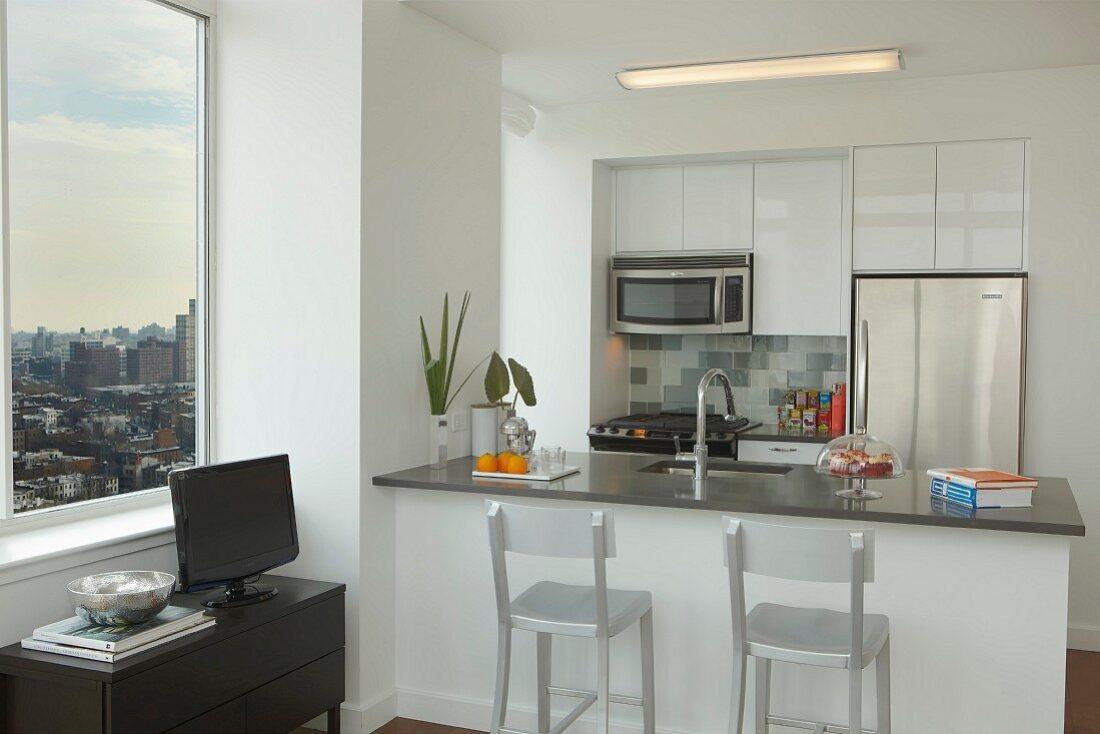Modern High Rise Kitchen
