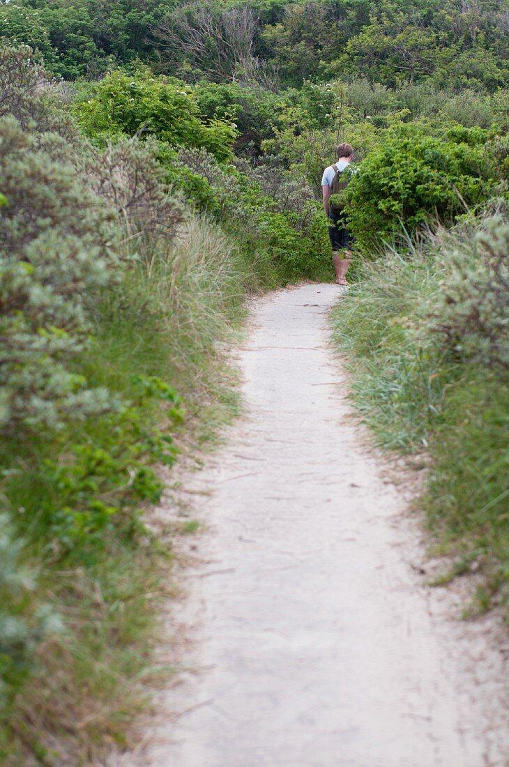 Man running along a narrow path through a green dune landscape