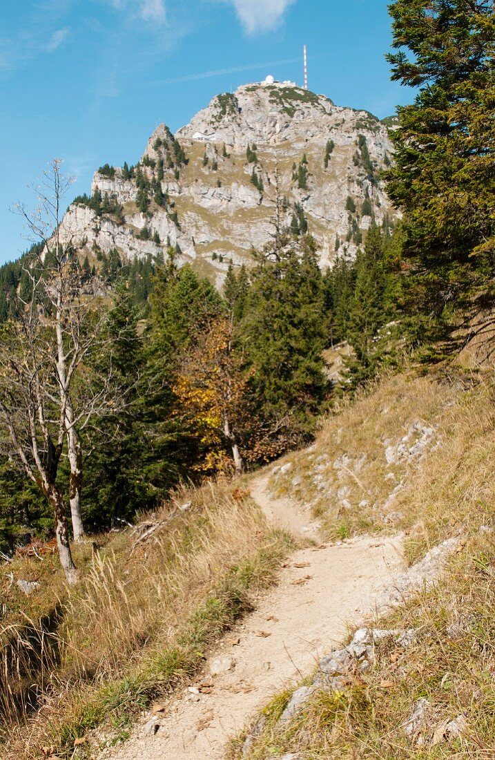 Hiking trail in the mountains (Wendelstein, Germany)