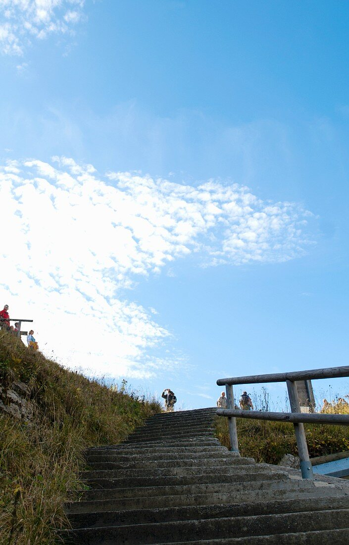 Stairs to a viewing platform in the mountains
