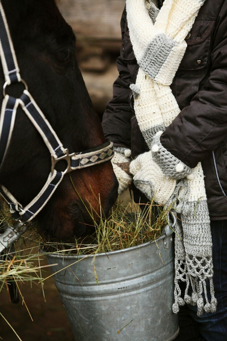 Woman wearing hand-crocheted gloves and scarf feeding a horse