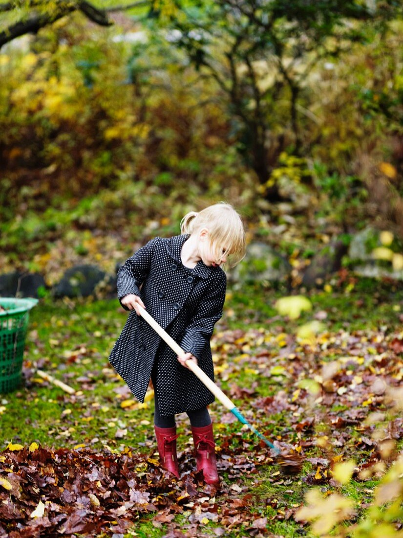 Girl raking autumn leaves