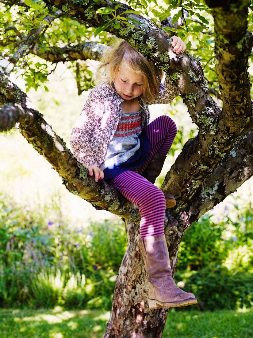 Mädchen sitzt in einem Baum
