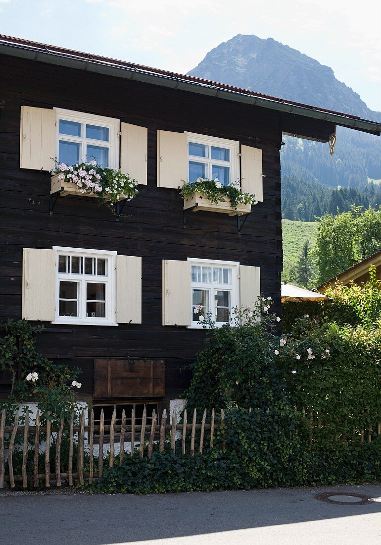 Dark wooden house with window boxes and pale wooden shutters in front of mountain landscape