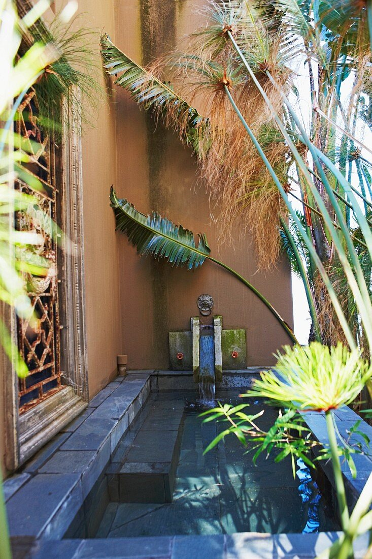Palm fronds next to stone pool against house facade