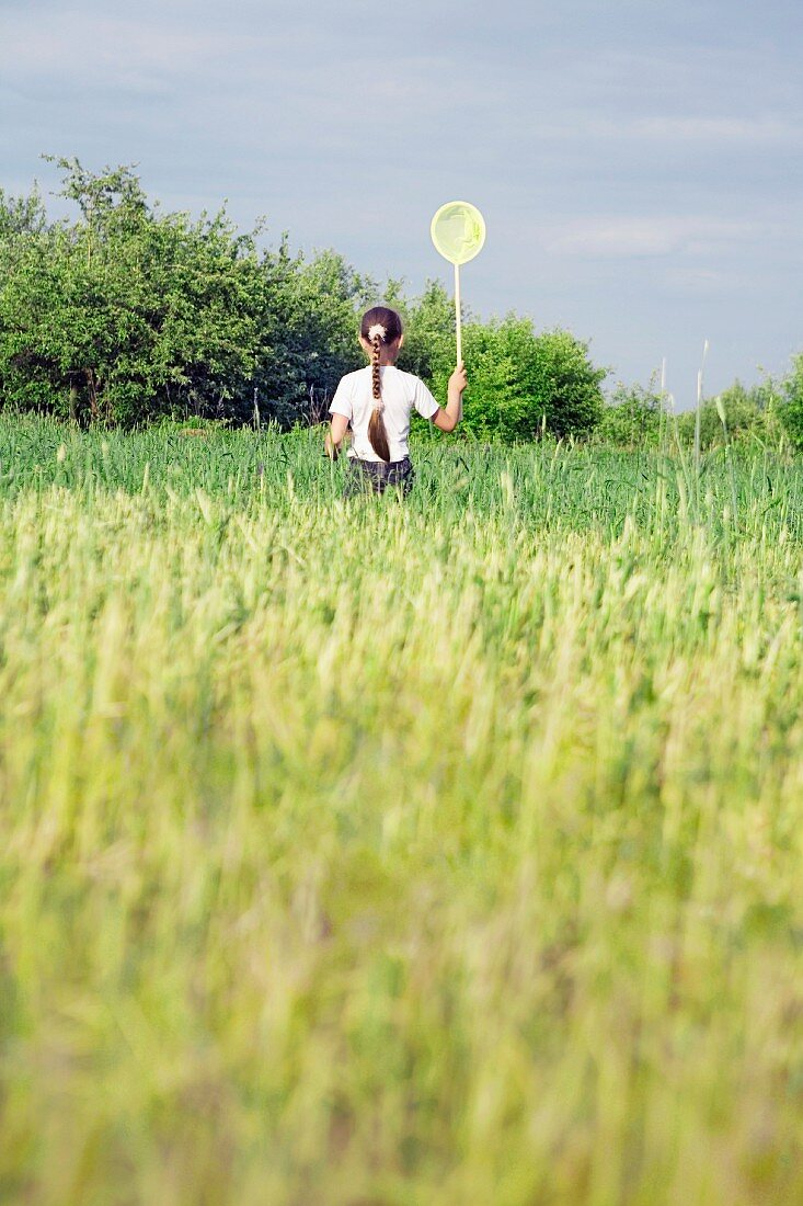 Rear view of a young girl catching butterflies in a field