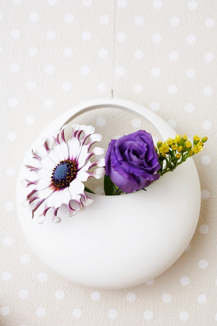 A blue daisy and lisianthus in a round vase