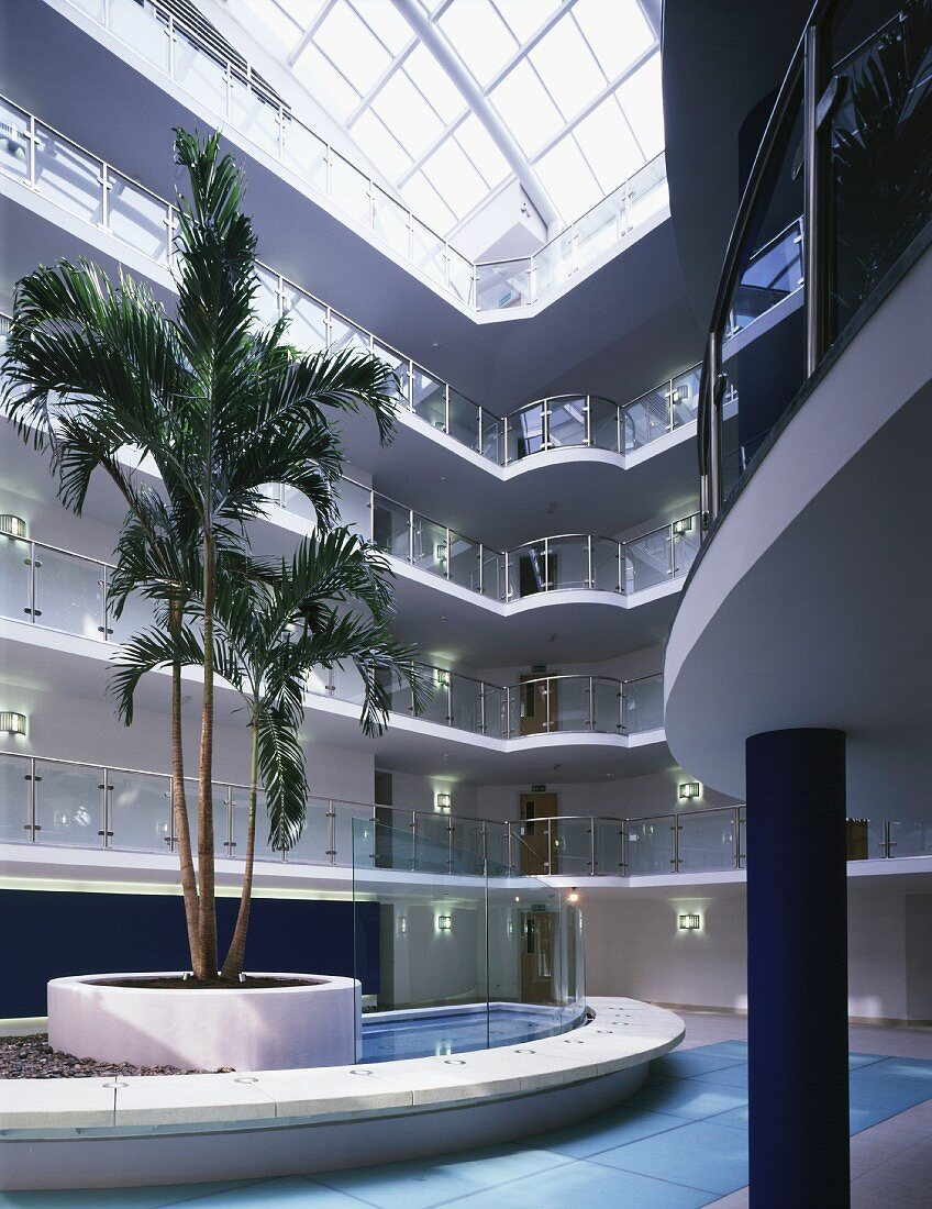 Palm tree in lobby of apartment house with natural light falling through broad glass roof