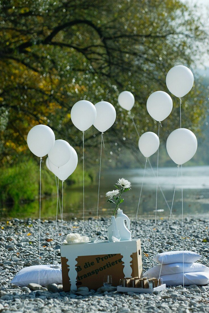 Summer picnic on river bank with table made of cardboard box, white floor cushions and balloons