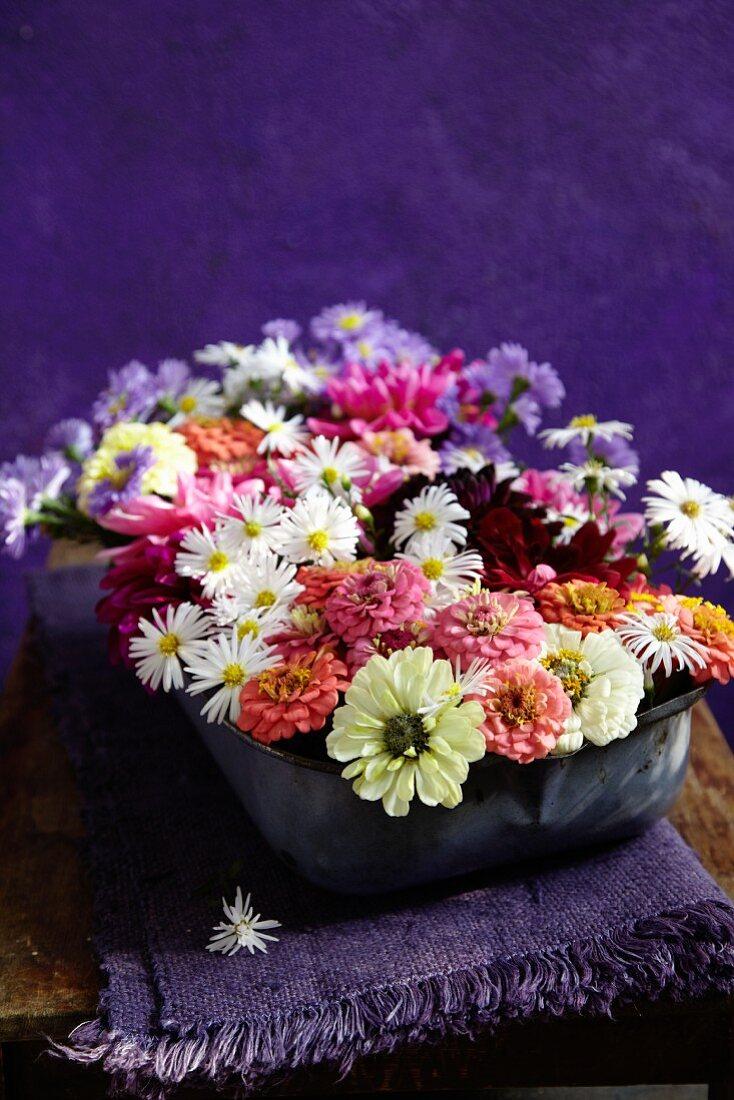 Short-stemmed, late summer garden flowers arranged in enamel dish on folded, fringed violet linen cloth