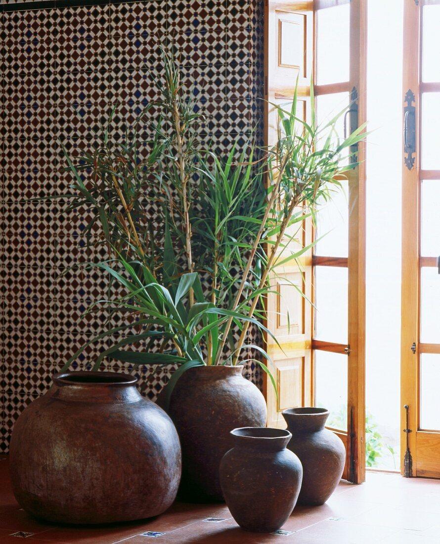 Reed grass in ceramic vases