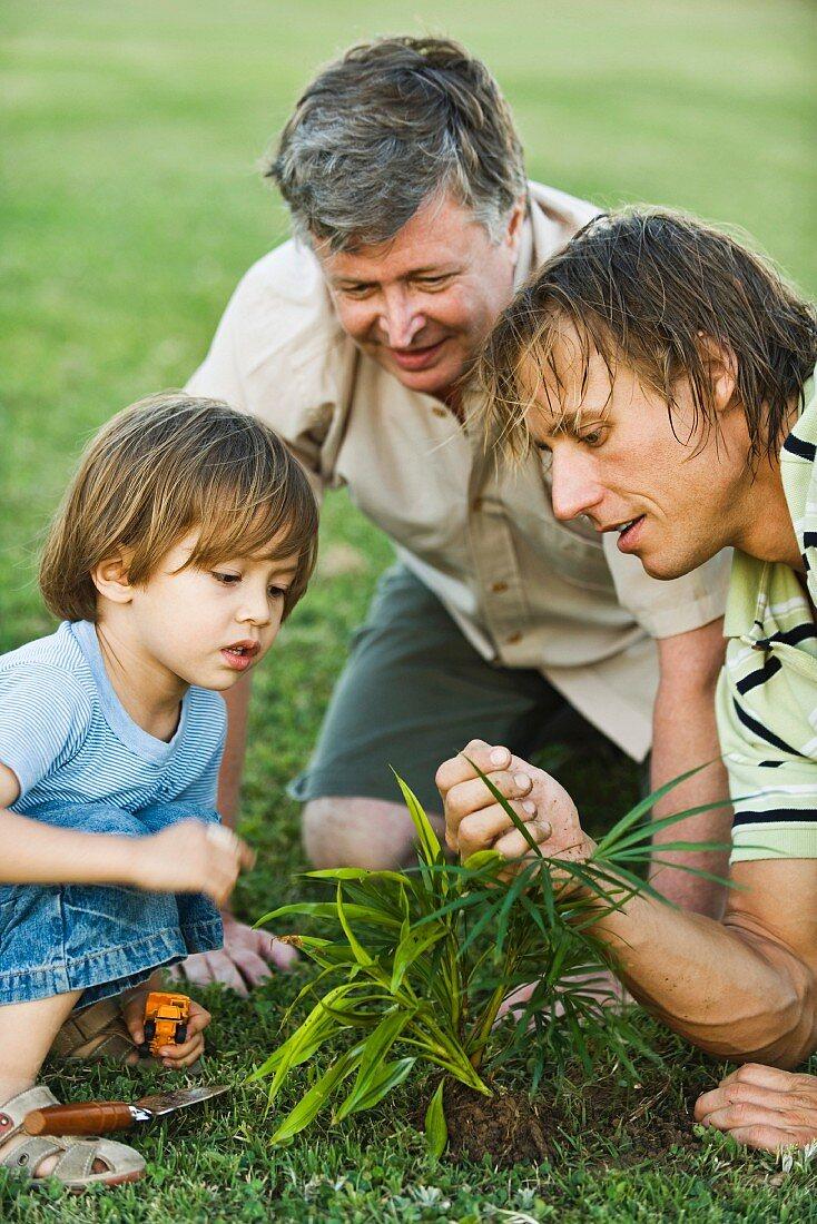Familie auf der Wiese vor frisch gepflanztem Busch