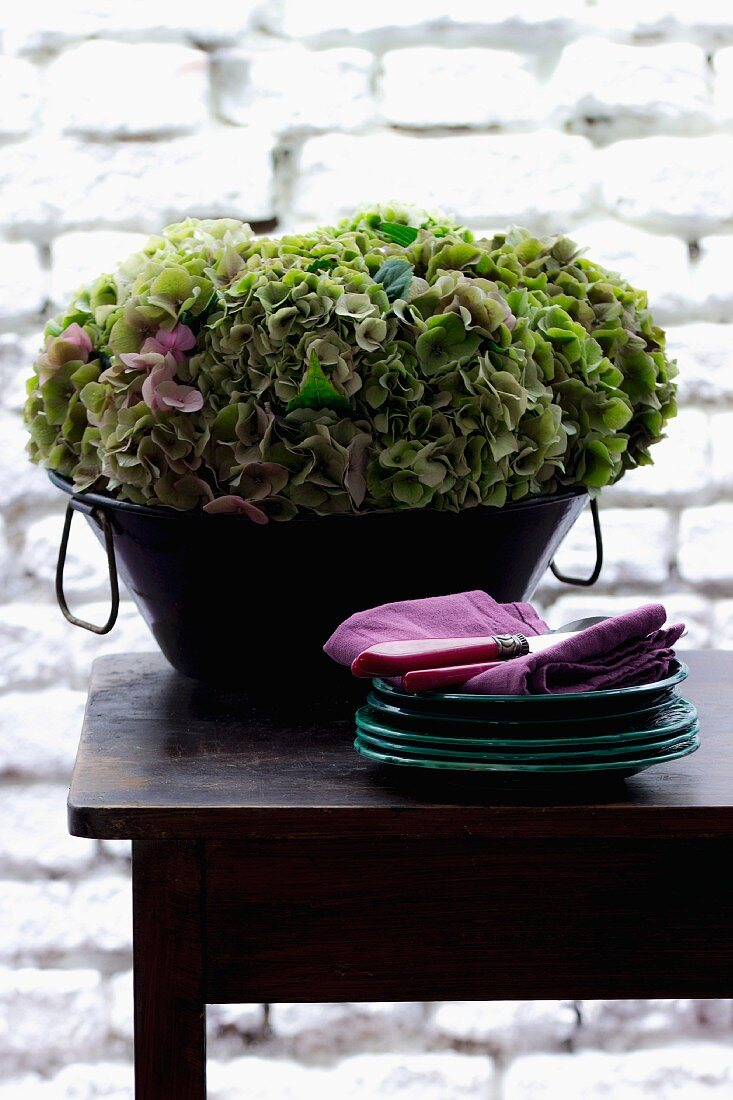 Hydrangea and plates on wooden table in front of white brick wall