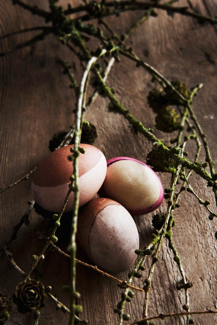 Hens' eggs partially dyed in using walnut shells and wild madder amongst larch twigs on wooden table