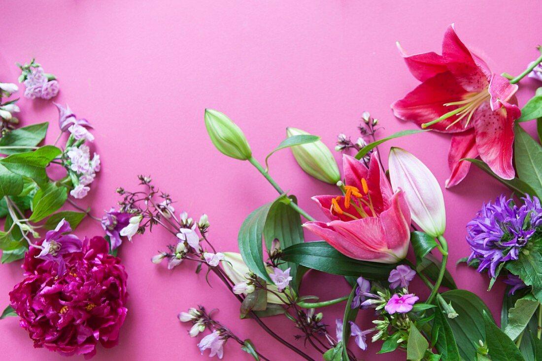Various flowers - lilies, clustered bellflower, peonies, phlox - on pink surface