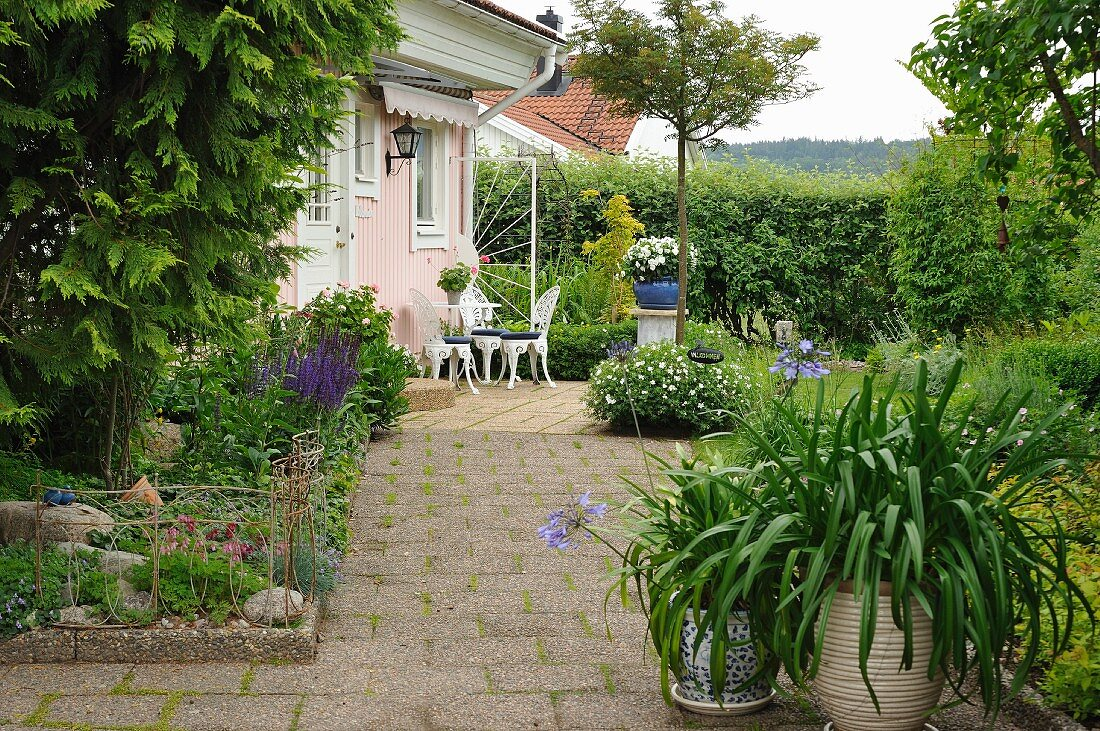 Foliage plants and potted agapanthus on terrace with concrete flags in front of seating area outside house